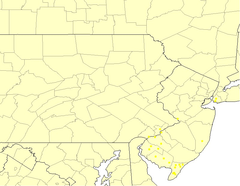 Birthplaces of some Division IV descendants in New York, New Jersey, and Pennsylvania born with the Corson surname or a variant